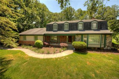 Southfield Single Family Home For Sale: 23659 Lake Ravines Drive