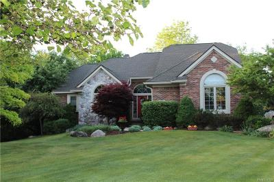 Lyon Twp Single Family Home For Sale: 22760 Indianwood Drive