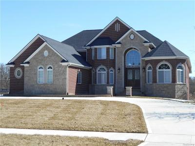 Troy Single Family Home For Sale: 6978 Duchess Court