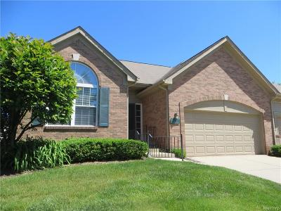 Commerce, Commerce Township, Commerce Twp Condo/Townhouse For Sale: 246 Winslow Circle
