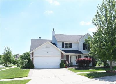 Canton, Canton Twp Single Family Home For Sale: 46900 Creeks Bend Drive