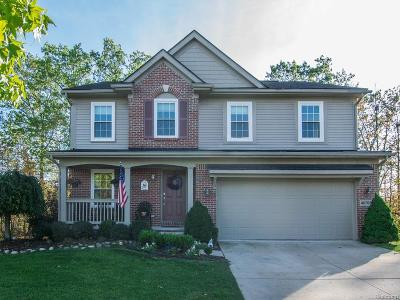 Canton Single Family Home For Sale: 46705 Woodside Drive