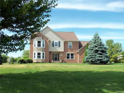 City Of The Vlg Of Clarkston, Clarkston, Independence, Independence Twp Single Family Home For Sale: 5048 Ashford Road