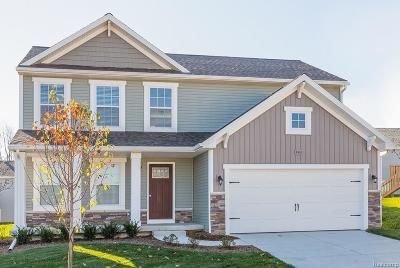 Van Buren Twp Single Family Home For Sale: 6951 Chandler Drive