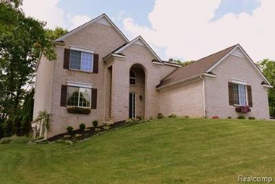 Milford Twp Single Family Home For Sale: 586 River Oaks Drive