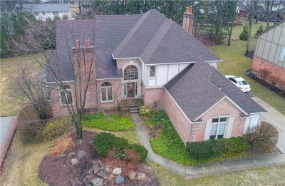 Troy Single Family Home For Sale: 2377 Oak Ridge Drive