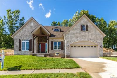 Milford Twp Single Family Home For Sale: 561 Napa Valley Drive