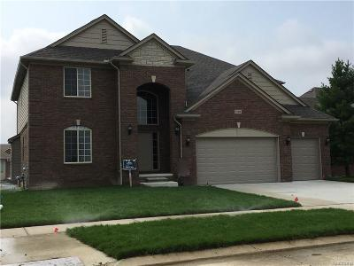 Macomb Twp Single Family Home For Sale: 19436 Springbrook Drive
