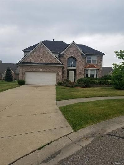 Livonia Single Family Home For Sale: 32998 Brookside Court