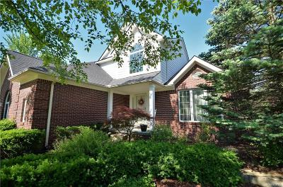 Novi Single Family Home For Sale: 21865 Dunnabeck Court
