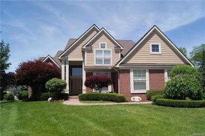 West Bloomfield, West Bloomfield Twp Single Family Home For Sale: 7420 Maple Mill Court