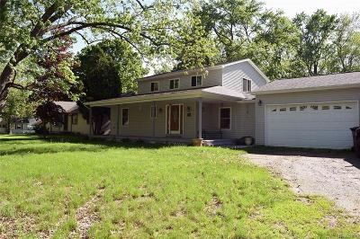 Commerce, Commerce Township, Commerce Twp Single Family Home For Sale: 3227 Newton Road