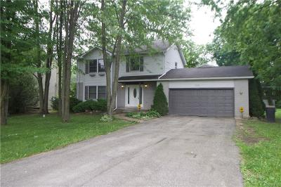 Canton, Canton Twp Single Family Home For Sale: 42263 Palmer Road