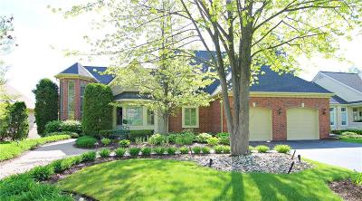 Lake Orion, Orion Twp, Clarkston, Independence Twp, Oxford Single Family Home For Sale: 5504 Saint Andrew Drive