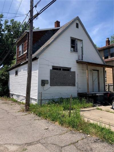 Hamtramck Single Family Home For Sale: 11327 Fleming Street