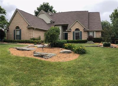 Novi Single Family Home For Sale: 21619 Chase Drive