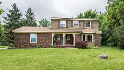 Northville Single Family Home For Sale: 53539 Nine Mile Road