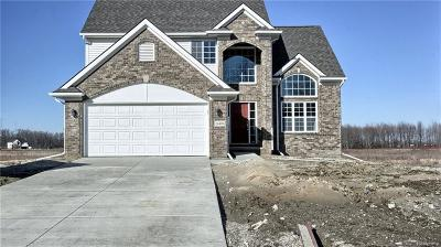 Lyon Twp Single Family Home For Sale: 55871 Worlington Lane