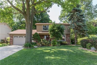 Rochester Hills Single Family Home For Sale: 713 Denham Lane