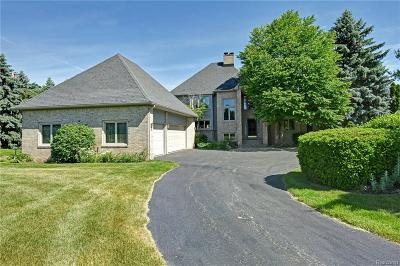 Lake Orion, Orion Twp, Clarkston, Independence Twp, Oxford Single Family Home For Sale: 4206 Newcastle Drive