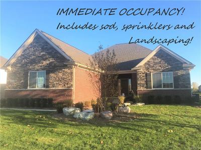Oxford Single Family Home For Sale: 409 South Shore