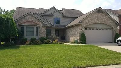 Riverview Single Family Home For Sale: 17030 Park Avenue Avenue