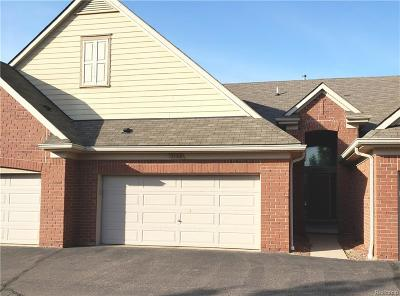 Rochester, Rochester Hills, Shelby Twp Single Family Home For Sale: 7103 Moore Court
