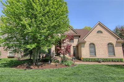 West Bloomfield Twp Single Family Home For Sale: 4695 S Ridge Drive