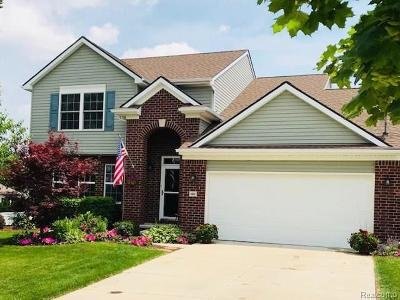 South Lyon Single Family Home For Sale: 460 Princeton Drive
