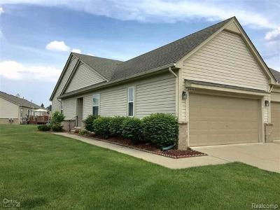 Sterling Heights Condo/Townhouse For Sale: 34145 Birchway Circle