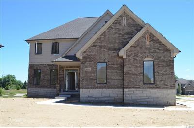 Washington Twp MI Single Family Home For Sale: $459,900