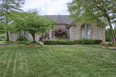 Single Family Home For Sale: 41248 Marksway Court