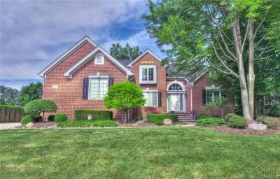 Auburn Hills Single Family Home For Sale: 4497 Hawthorn Drive