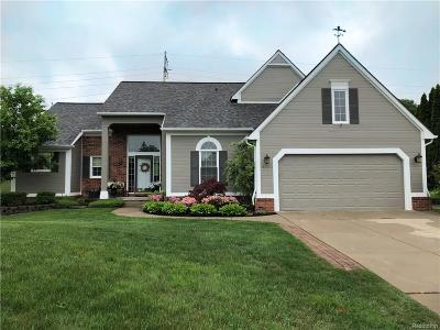 Lake Orion, Orion Twp, Clarkston, Independence Twp, Oxford Single Family Home For Sale: 6791 Canterbury Lane