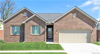 Lake Orion, Orion Twp, Clarkston, Independence Twp, Oxford Single Family Home For Sale: Sandoval Lot18 Drive