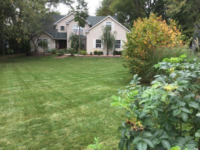 Lake Orion, Orion Twp, Clarkston, Independence Twp, Oxford Single Family Home For Sale: 4439 Sedona Drive