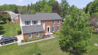 Rochester Hills Single Family Home For Sale: 431 Rochdale Drive N
