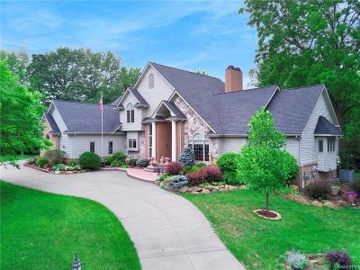 Novi Single Family Home For Sale: 47550 Iroquois Court
