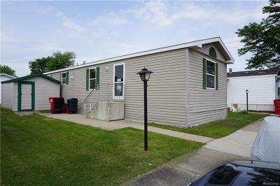 Macomb Twp Single Family Home For Sale: 17187 Easterbridge Street