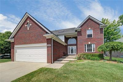 Sterling Heights, Shelby Twp, Utica Single Family Home For Sale: 13497 Trotters Lane