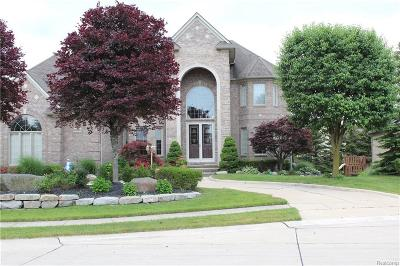 Livonia Single Family Home For Sale: 20592 Chestnut Circle
