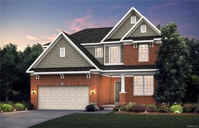 Novi Single Family Home For Sale: 28284 Hummingdale Circle