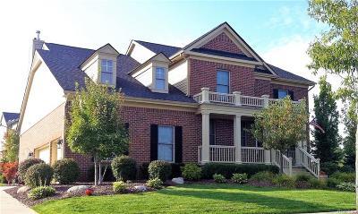 Canton Single Family Home For Sale: 6921 Sylvania Lane