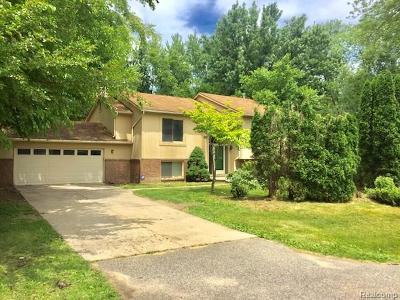 Farmington Single Family Home For Sale: 30476 Salisbury Street