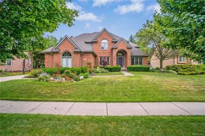 Novi Single Family Home For Sale: 21118 Chase Drive