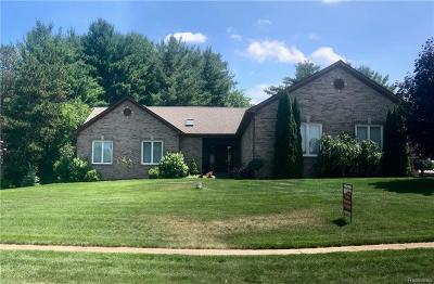 Green Oak Twp MI Single Family Home For Sale: $425,000
