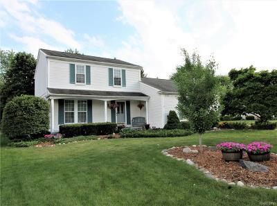 Novi Single Family Home For Sale: 44721 Huntington Drive