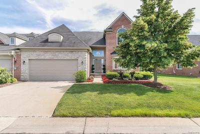 Canton Condo/Townhouse For Sale: 47633 Vistas Circle Drive N