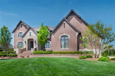 Oakland Twp MI Single Family Home For Sale: $1,199,000