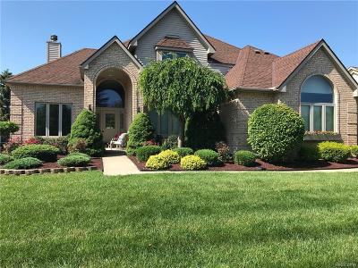 Canton Single Family Home For Sale: 45491 Glengarry Boulevard